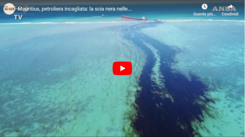 Disastro ambientale, una scia nera sta sporcando le acque cristalline dell'isola di Mauritius 📹 VIDEO